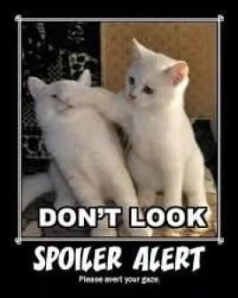 Spoiler Cats