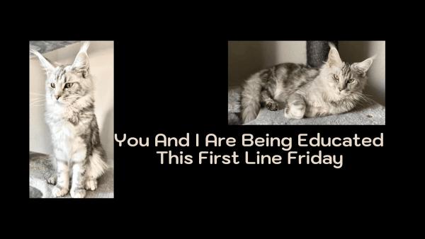 First Line Friday Deadly Education Naomi Novik