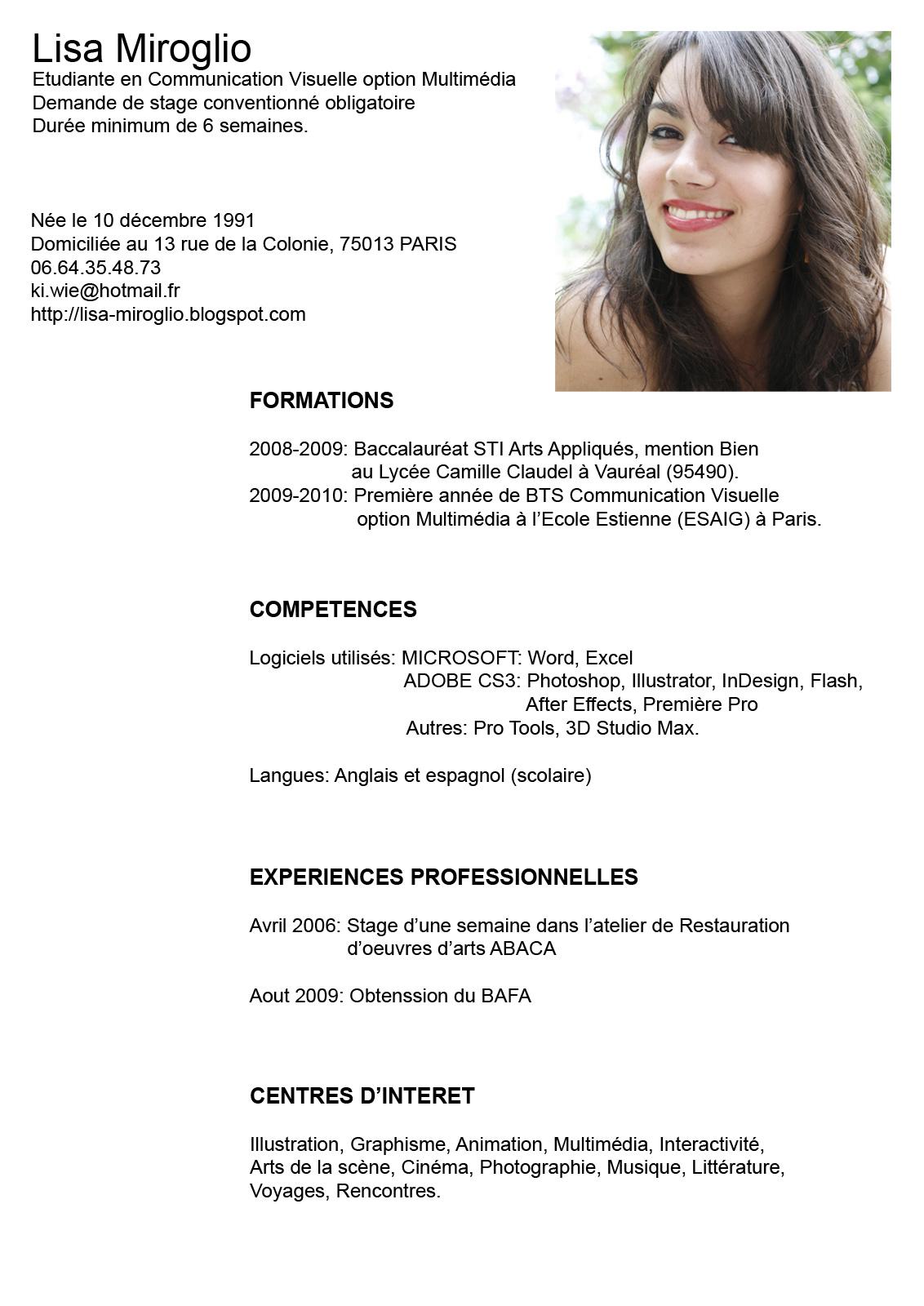 Curriculum Resumen. resumen curricular. ingenieria practica del ...