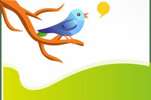 Writing for Twitter on www.novytechandcopy.com