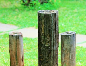 Short post experiment on www.novytechandcopy.com