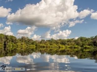 Dżungla Amazońska, widok na rzekę