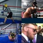 McGregor vs Malignaggi sparring confrontation
