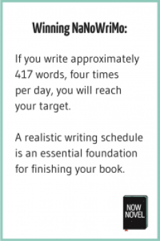 Winning NaNoWriMo - writing schedule tip