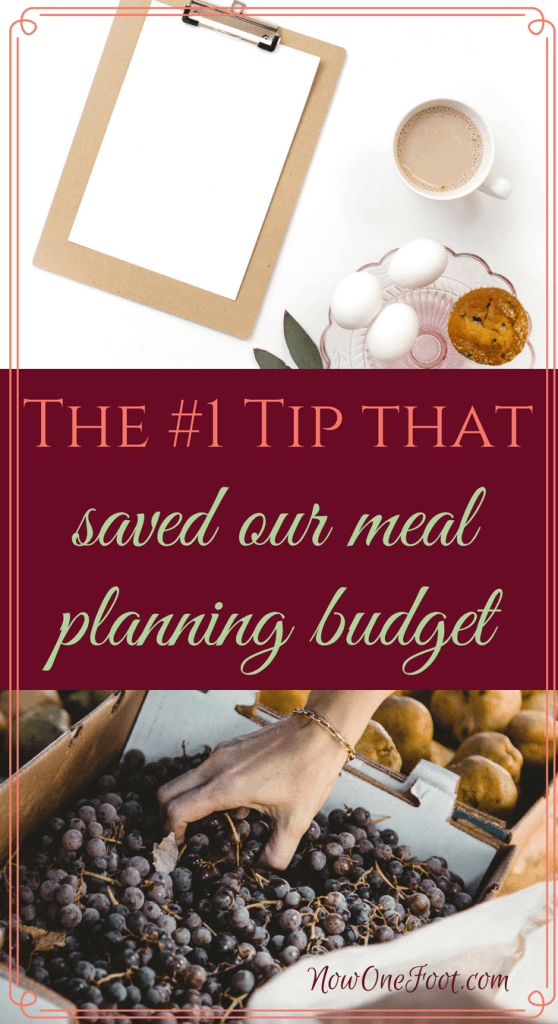 Meal Planning on a Budget | Meal Planning for a family | Real Food on a Budget | Healthy eating meal plan on a budget | Money saving tips | Meal Plan Tips | How to meal plan on a budget