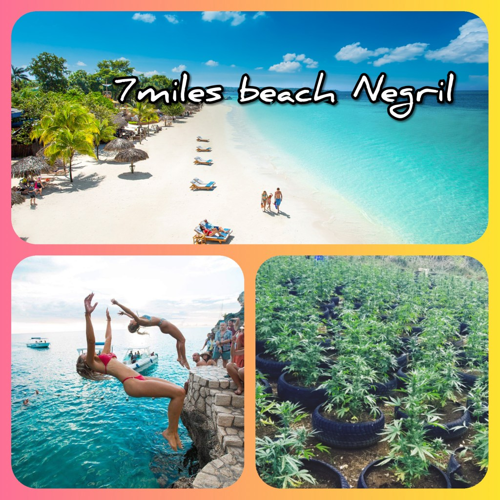 1-4 Persons $270 frm Mobay/negril $200