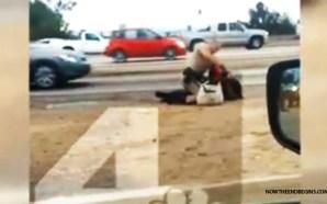 california-highway-patrol-officer-beats-woman-in-head