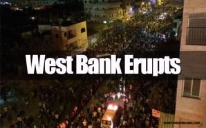 west-bank-palestine-erupts-into-violence-july-24-2014