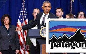 patagonia-outdoor-clothing-ceo-rose-marcario-pledges-resistance-president-trump