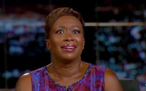 msnbc-star-joy-reid-denies-homophobic-comments-fake-news-media-covers-for-her