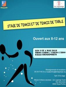 affiche stage Tennis de table