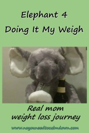 Elephant 4 Real Mom Weight Loss Journey