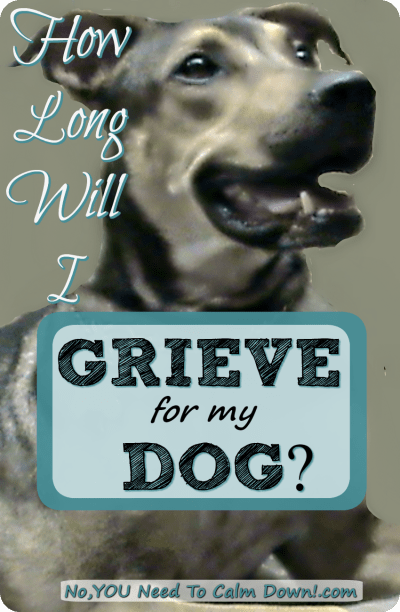 How long will I grieve for my dog?