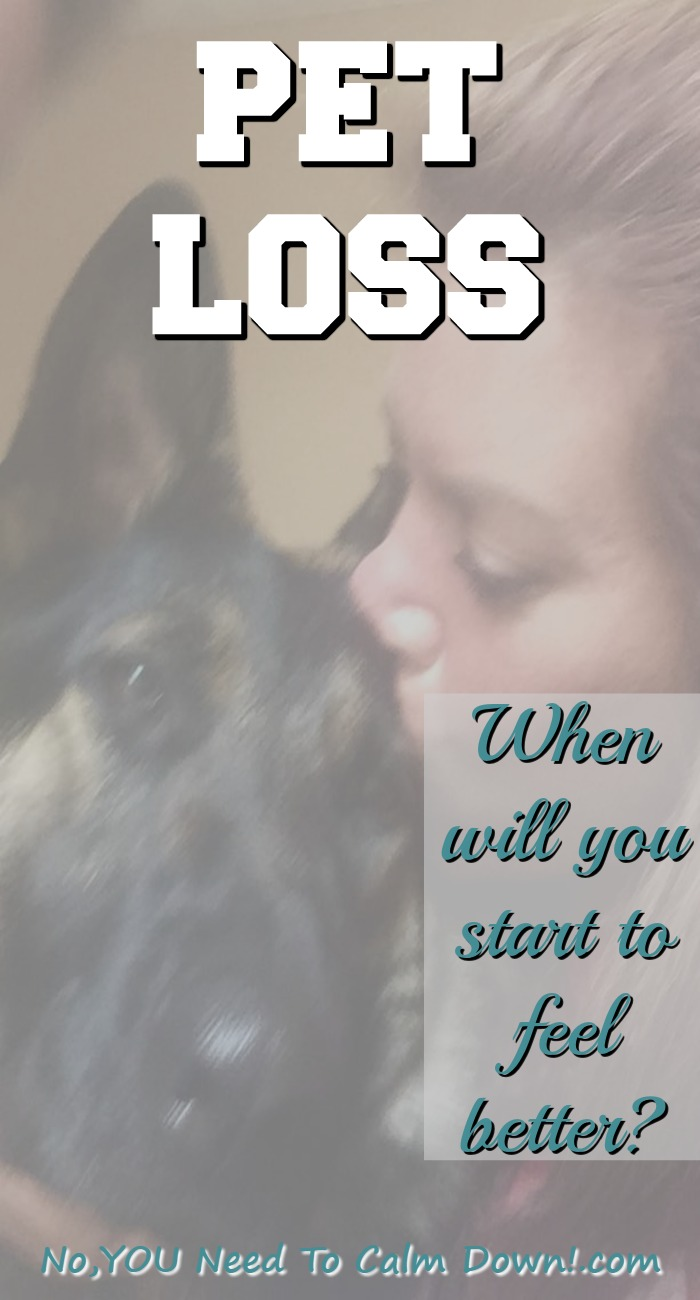When you lose your pet, it can be hard to imagine a time when you won't be so sad. Sometimes you just need an idea of how long it will take to grieve for your dog.
