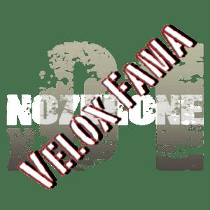 noZerOne Logo 2014 Velox Fama 362x362