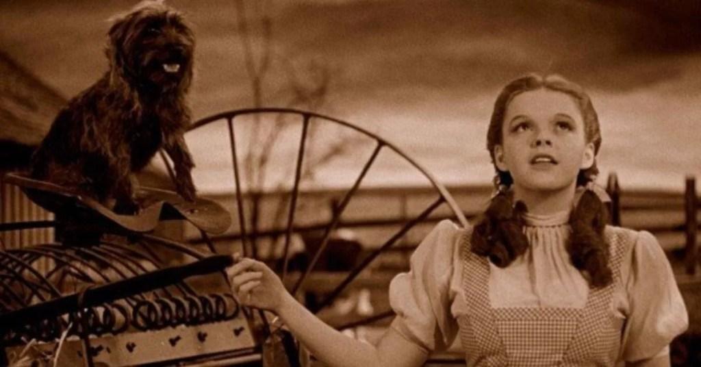 Il mago di Oz Judy Garland