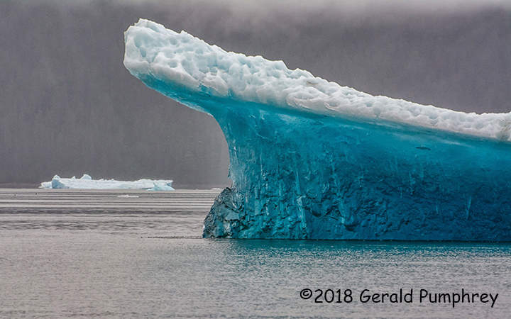 3rd Place Scenic - Tracy Arm Bergs by Gerald Pumphrey