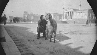 Photo of Όταν η Αθήνα είχε γίδια και κατσίκια