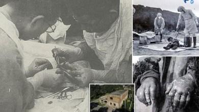Photo of Μονάδα 731: Το πιο φρικιαστικό έγκλημα στην ιστορία της ανθρωπότητας
