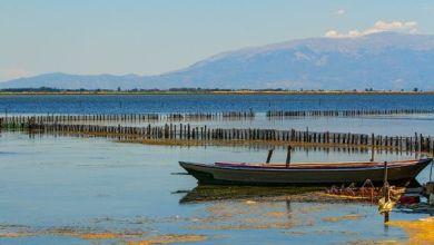 Photo of Δυτική Ελλάδα: Έντονες αντιδράσεις για το περιβαλλοντικό νομοσχέδιο