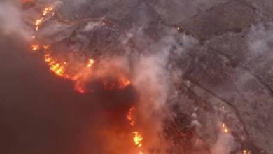 Photo of Αντιπεριφερειάρχης της ΝΔ ο άνθρωπος που άφησε τα Κύθηρα να καούν για να φάει ανώτερο του στην Πυροσβεστική