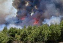 Photo of Φωτιά στις Οινιάδες Μεσολογγίου – Μεγάλη δύναμη της πυροσβεστικής στο σημείο