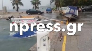 Photo of Καταιγίδα Ιανός-Αστακός: Βούλιαξαν βάρκες στο λιμάνι