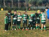 Livorno: i risultati delle giovanili