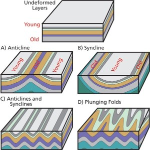 Tectonic Folding (US National Park Service)
