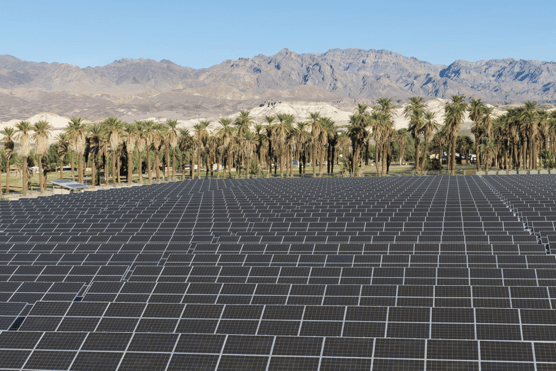 A large solar panel array take up most of the photo. In the background are palm trees, then distant desert mountains.