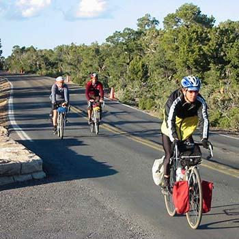 Ormanlık bir alanın kenarı boyunca asfalt bir yolda yürüyen üç bisikletli.