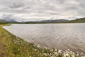 Snipe Lake