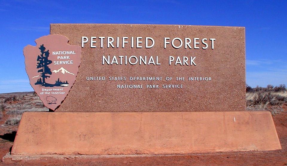 Petrified Forest Address