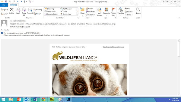 wildlife alliance e-newsletter 1