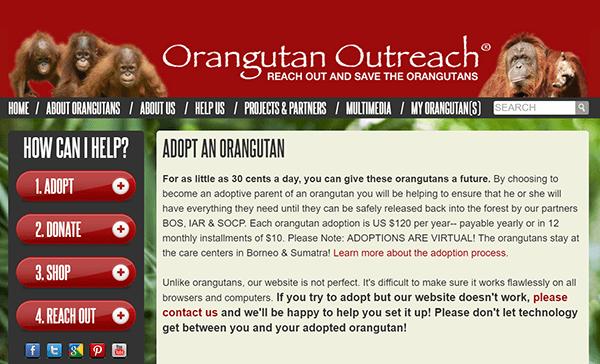 orangutan-outreach-adotpions