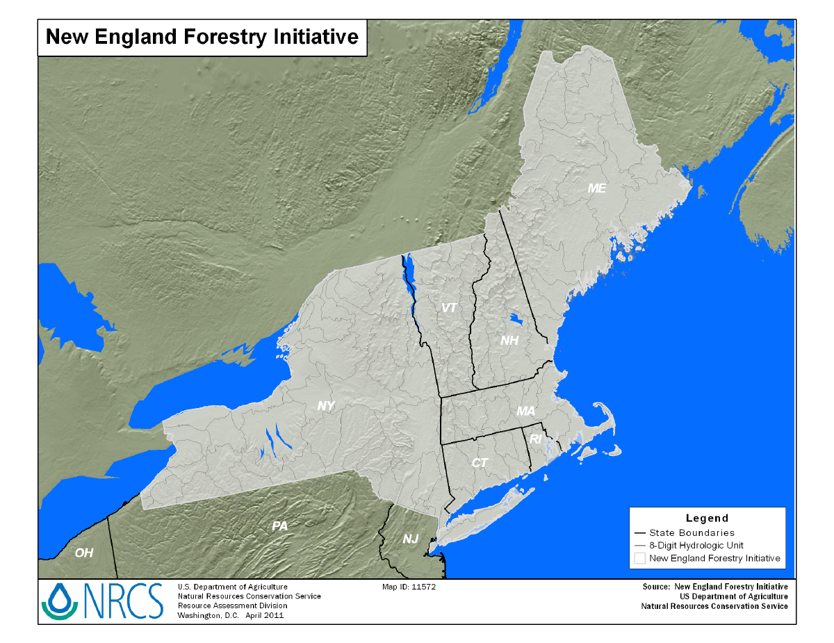New England New York Forestry Initiative