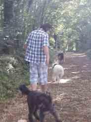 Sortie chiens libres - 25 Juin 2017-Bis (12)