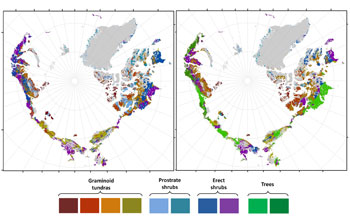 A map of predicted greening of the Arctic