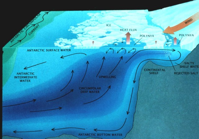 Graphic: sea ice/ ice shelf