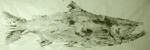 Angie Chinook Fishprint