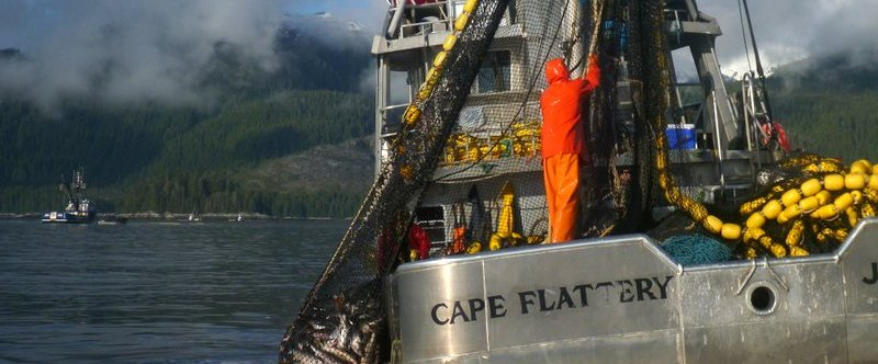 Deep Inlet Update – 29 August '17