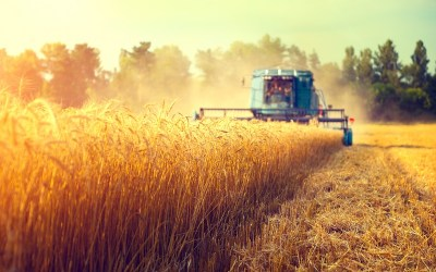 New data shows the resilience of state farmers