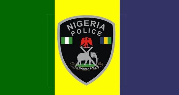 Image result for Nigerian police logo