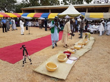 Kano State Commences CBN/KNSG Rice Anchor Borrowers Program
