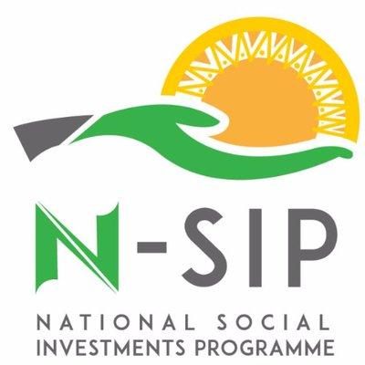 Image result for National Social Investment Programme