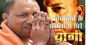 nti-news-yogi-not-in-action-why