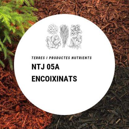 NTJ 05A ENCOIXINATS