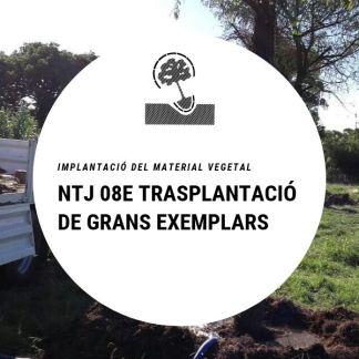 NTJ 08E Transplantació de grans exemplars