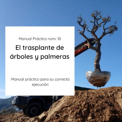 MP10 El Trasplante de árboles y palmeras