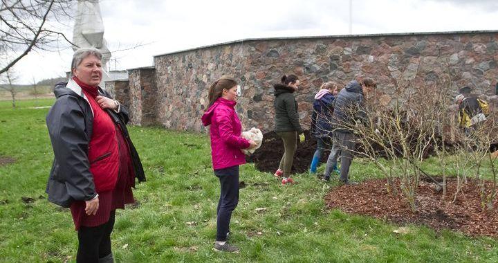 Jaunie dārznieki talko pie Lestenes baznīcas